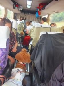 バスの車内はこんな感じ